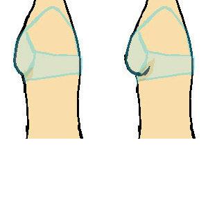 ブラジャーとバストの大きさの比較