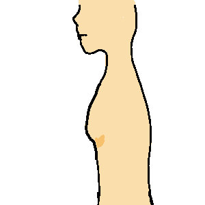 胸の測り方